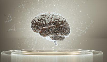 脳血栓回収実施医養成コース